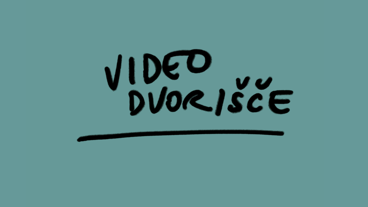 Video dvoršiče